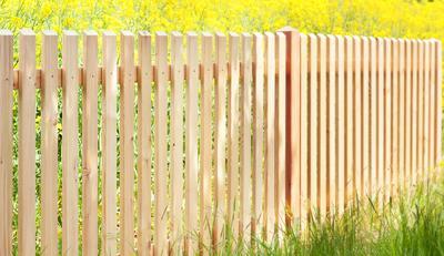Zaunlatten Sibirische Larche Holz Im Garten