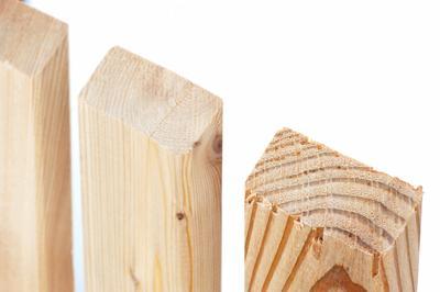 Zaunlatten Und Riegel Zaunlatte Sibirische Larche 1 25 M Holz Im